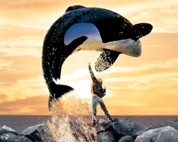 Jason Ricter Twitter post Kid sentenced for whale theft. Image courtesy of @JasonRichter